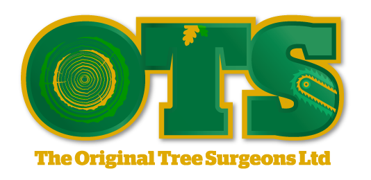 The Original Tree Surgeons, Sevenoaks & Tunbridge Wells